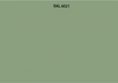 RAL 6021